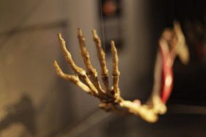 museo leonardo da vinci e archimede siracusa